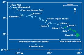 hawaiian monk seal habitat