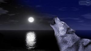Wolf Moon Wallpaper