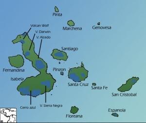 Galapagos Tortoise Habitat