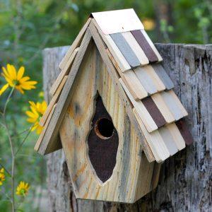 Tufted Titmouse Birdhouse