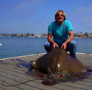 Bat Ray Fishing