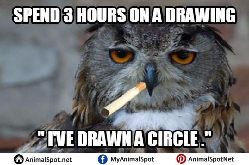 Art School Owl Meme owl memes