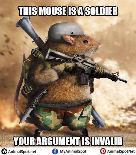 Mouse Memes