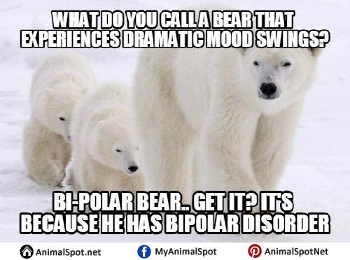 Polar Bear Memes