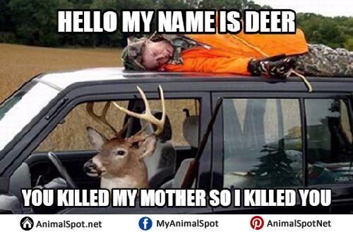 Deer Hunting Meme deer memes,