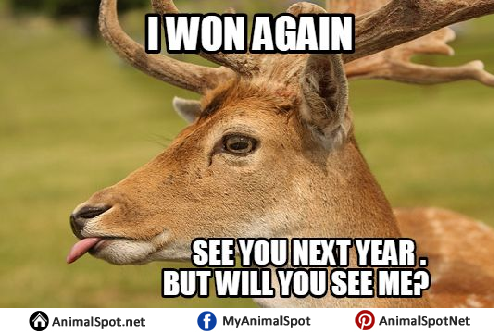 deer hunting memes - photo #13