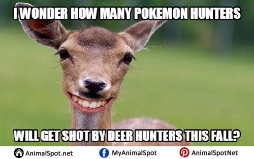 Funny Deer Memes deer memes,Funny Deer Memes