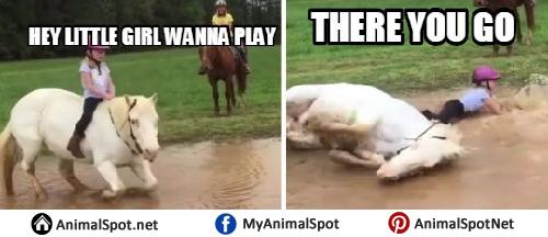 Horse meme soon - photo#26